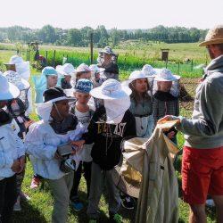 Warsztaty pszczelarskie dla dzieci