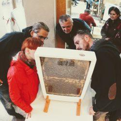 Warsztaty pszczelarskie - ul pokazowy