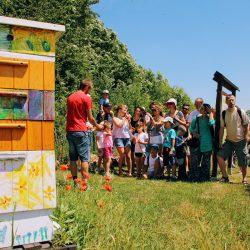 Warsztaty pszczelarskie