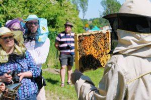 Odbyły się również warsztaty pszczelarskie