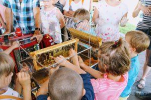 Dzieci nie mogą doczekać się na odwirowanie miodu